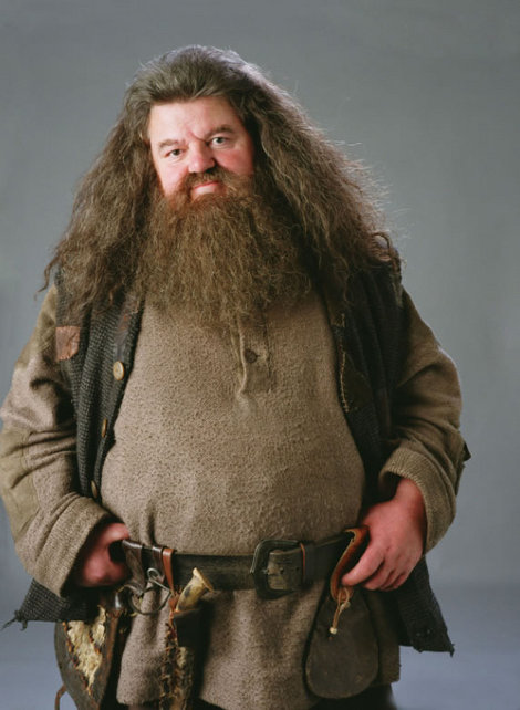 Robbie Coltrane la saga Harry Potter